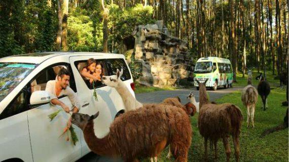 Wisata di Pasuruan yang begitu populer dan indah